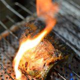 今回は人気の塩サバを食べてみようと焼いてたら、脂がたっぷりで・・。