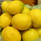 お一人様一個、『国産のレモン』をプレゼント中です!無くなり次第終了です。
